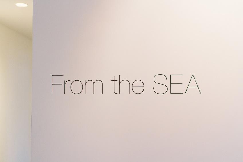 SEA-001