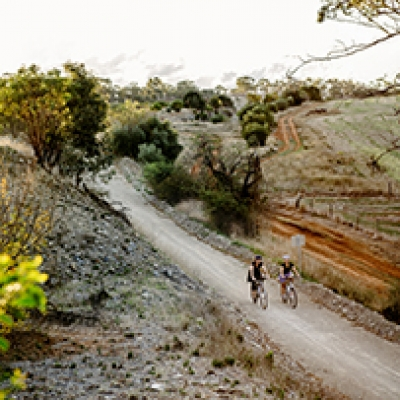 Lauren Bamford captures the Clare Valley's Riesling Trail for Qantas Insider